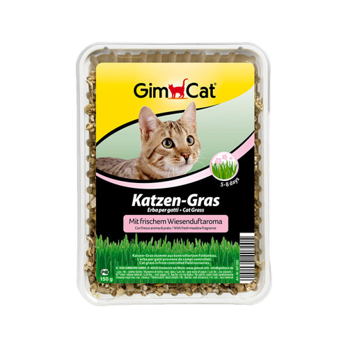 GimCat Katzengras - Wiesenaroma
