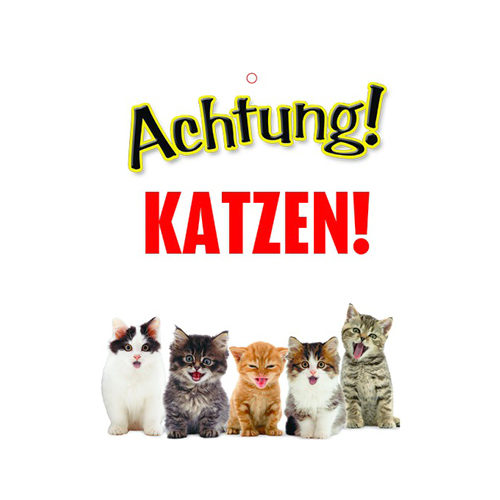 Plenty Gifts Warnschild Katzen