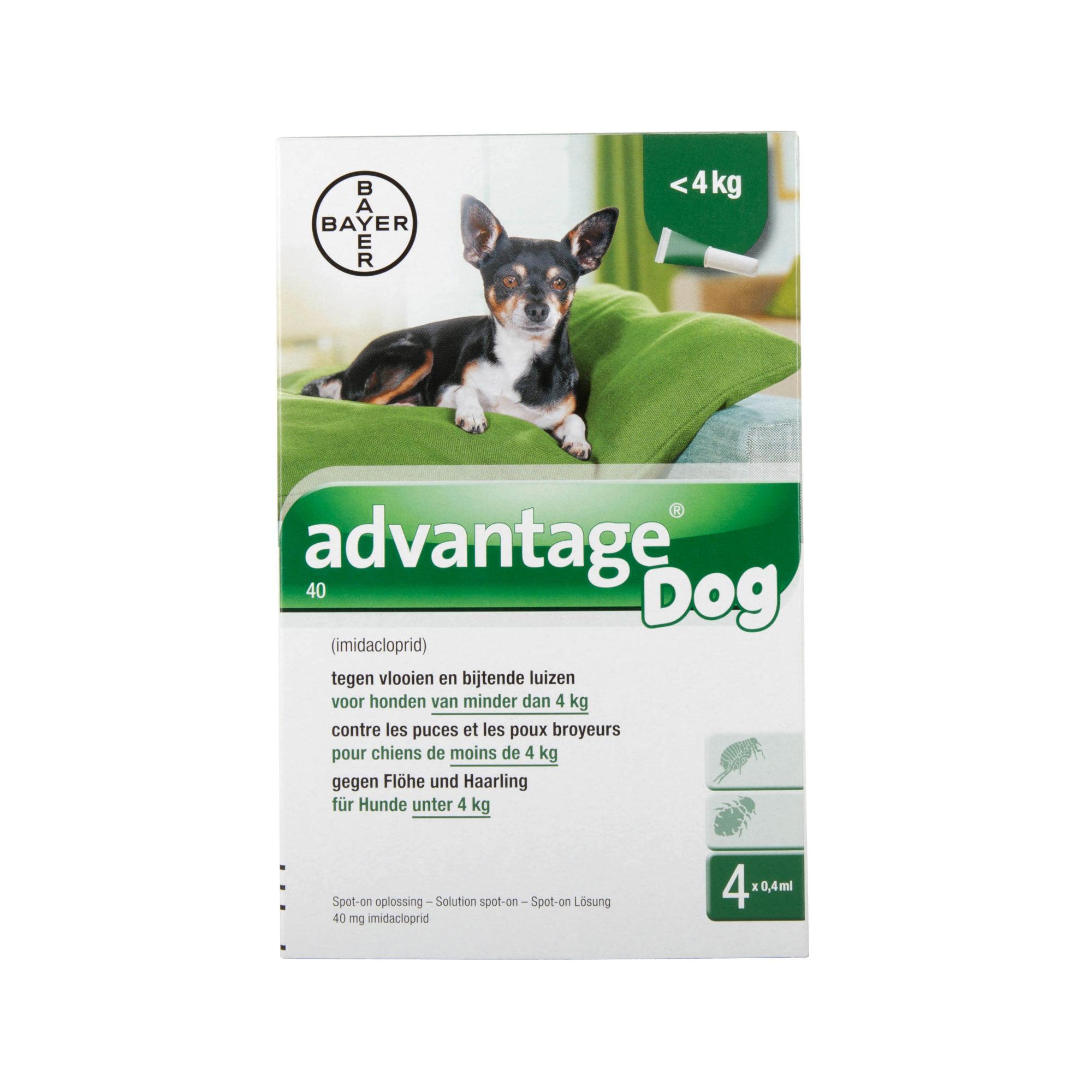 Advantage 40 Hund - bis zu 4 kg