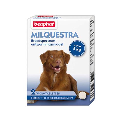 Beaphar Milquestra - großer Hund - 2 Tabletten