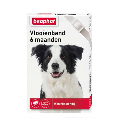 Beaphar Flohhalsband Hund 6 Monate - Weiß