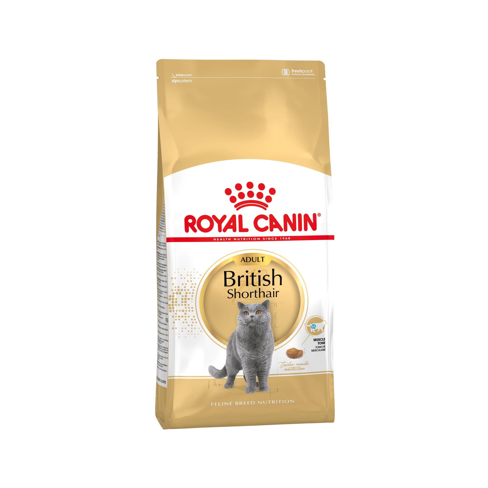 Royal Canin British Shorthair Adult Katzenfutter
