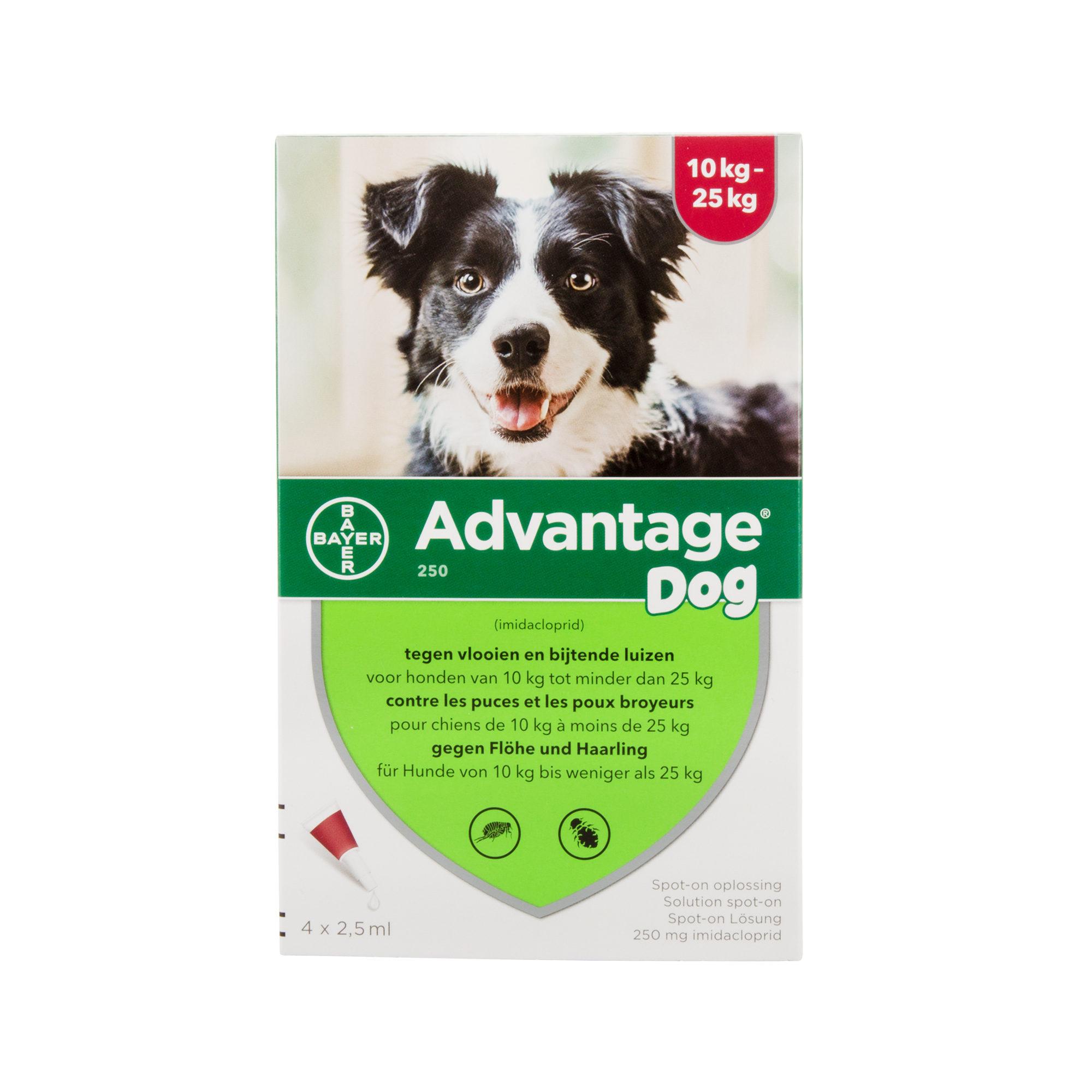 Advantage 250 Hund - 10 - 25 kg