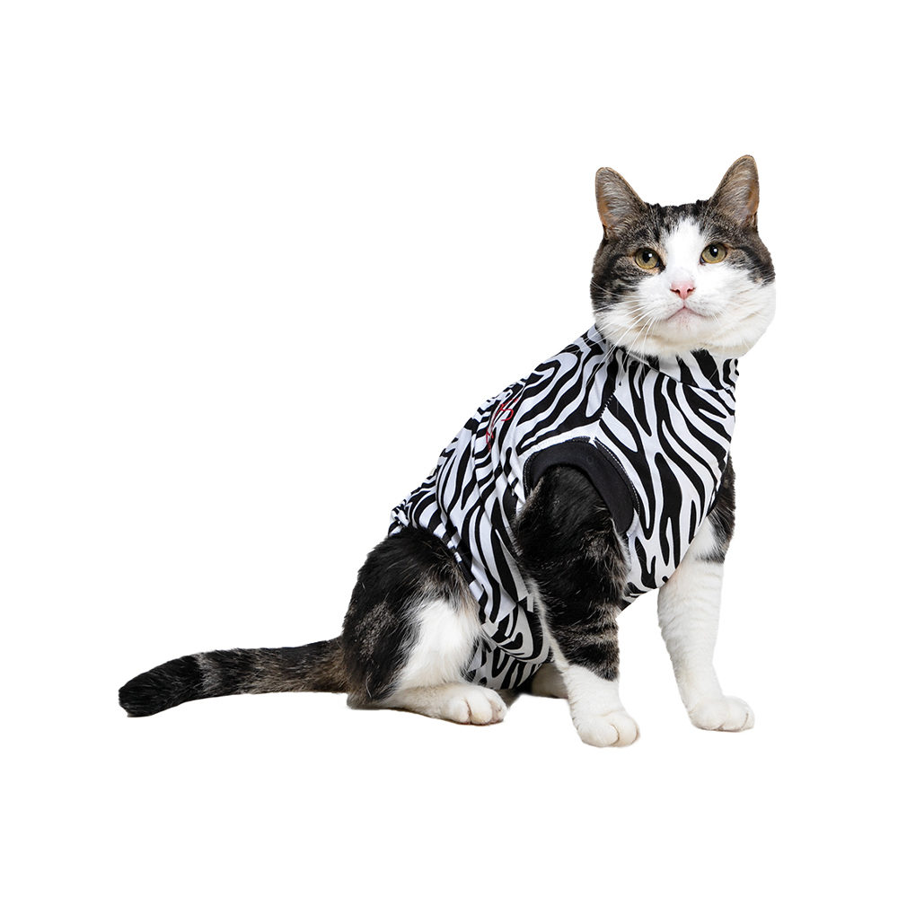 Medical Pet Shirt Katze - Zebra / Muster