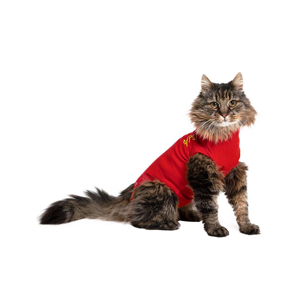 Medical Pet Shirt Katze - Rot