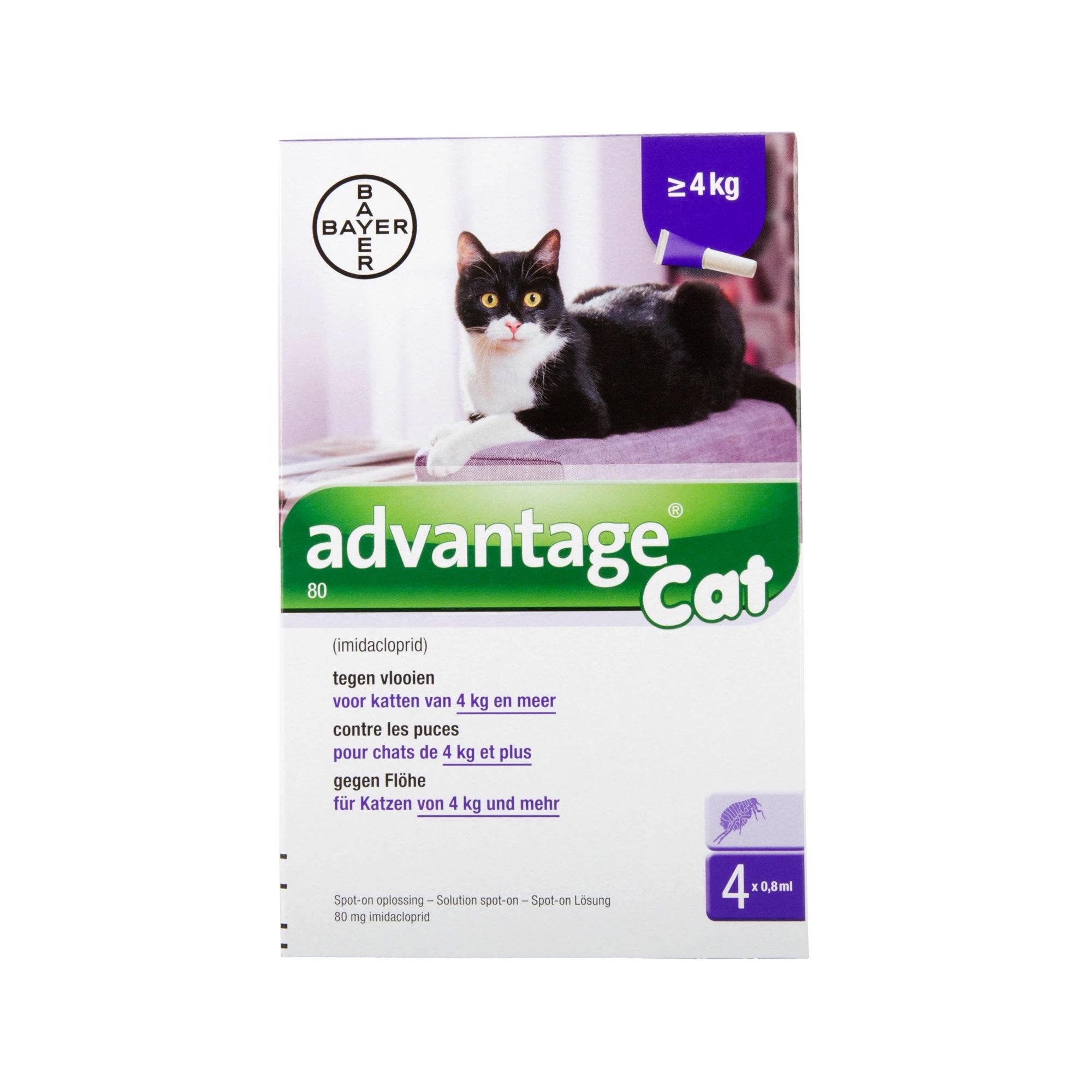 Advantage 80 Katze - mehr als 4 kg
