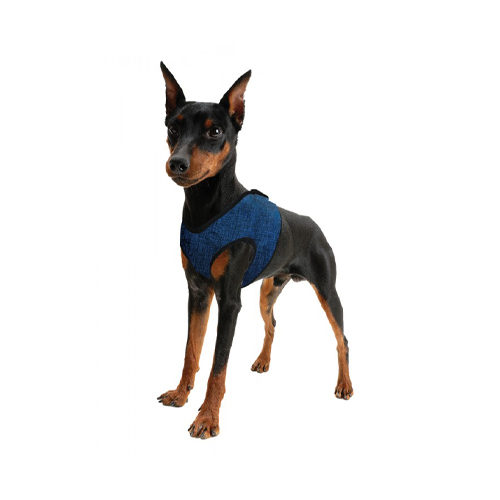 Aqua Coolkeeper Comfy Harness - Pacific Blue