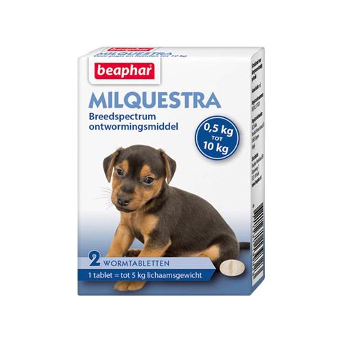 Beaphar Milquestra - kleiner Hund/Puppy